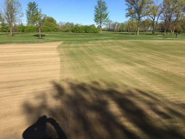 aerification brush roll